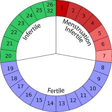 natural contraceptives